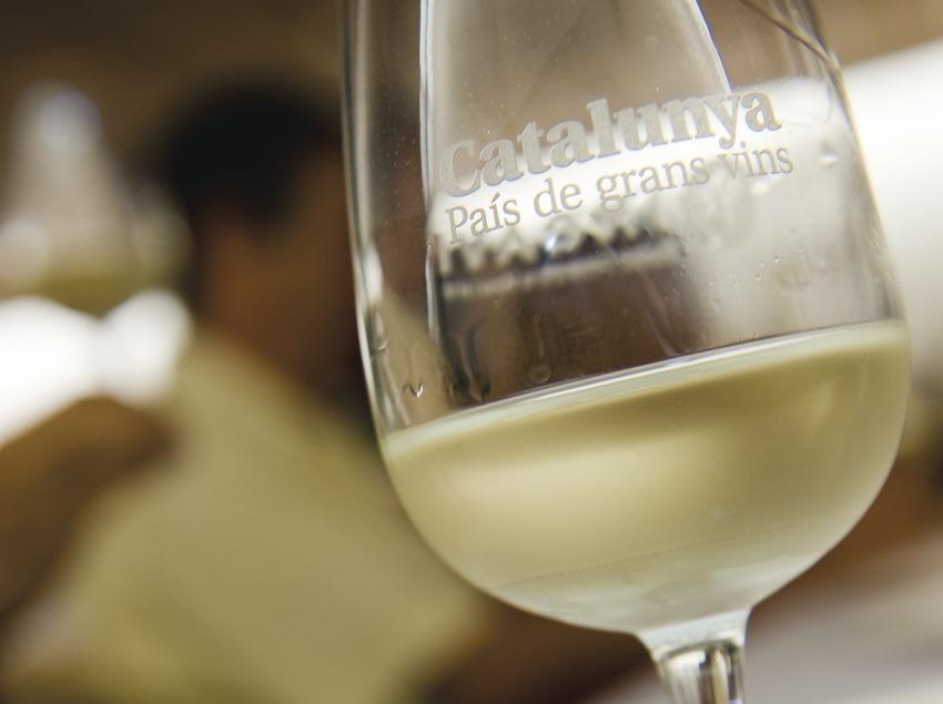 Наполненный белым вином бокал с надписью «Каталония, страна великих вин» во время урока дегустации. Ярмарка святого Варфоломея, или Праздник дынь (Gemma Miralda)