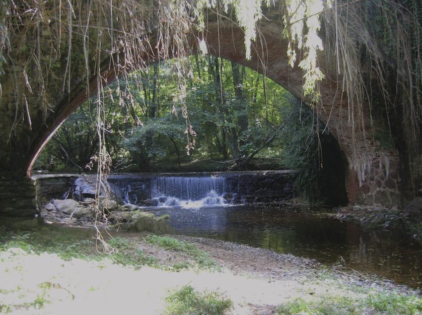 Catalunya Central. Puente y río en Fogars de Montclús, en el Parc Natural del Montseny   (Parc Natural del Montseny)