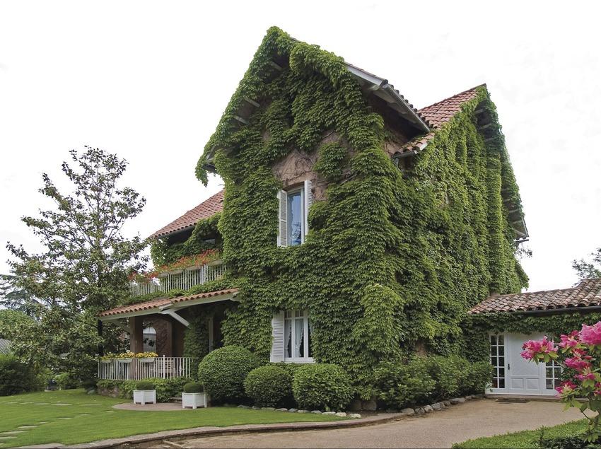 Costa Brava. Xalet La Coromina, en Viladrau   (Xalet La Coromina)