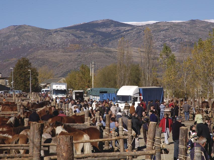 <p>Pirineus. Fira de Puigcerdà, a la Cerdanya</p> (Patronat Comarcal de Turisme de la Cerdanya)