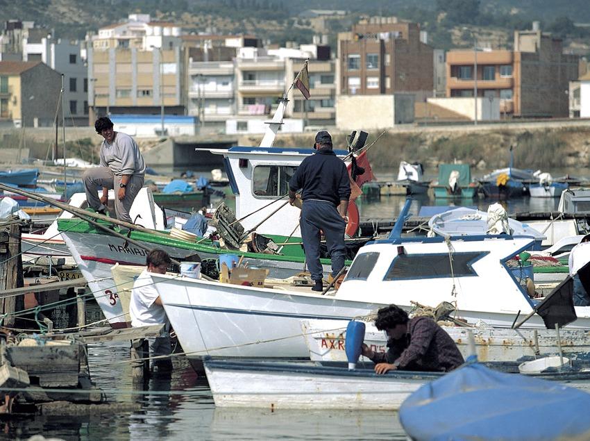 Vista del puerto pesquero.  (Oriol Alamany)