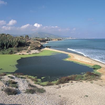 Desembocadura del riu Sènia