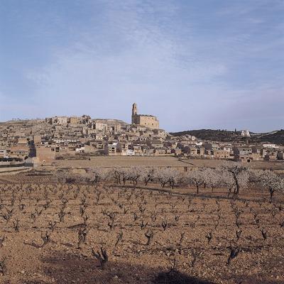 Terres de l'Ebre. Camps de vinyes i, al fons, el poble de Corbera d'Ebre