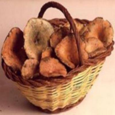 Festa del Bolet de Santa Susanna