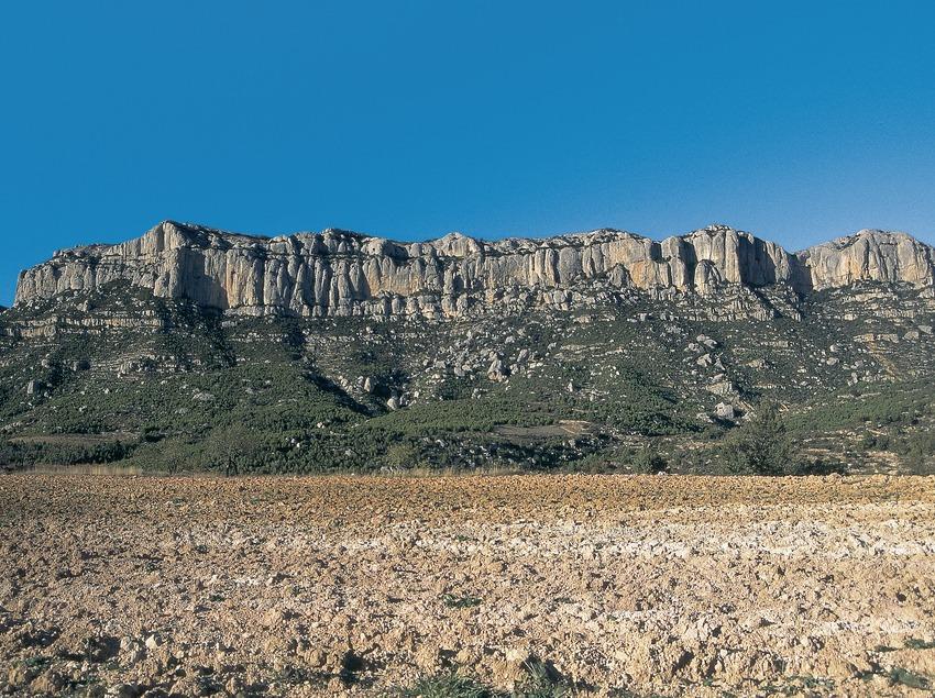Serra del Montsant  (Servicios Editorials Georama)