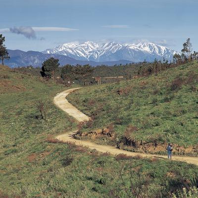 Excursionista en un sender de gran recorregut, a la serra de l'Albera.  (Oriol Alamany)