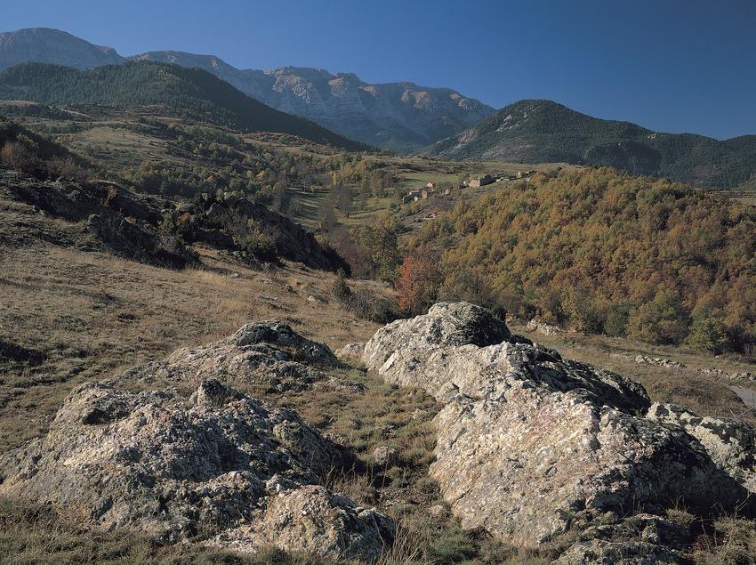 Coll de Bèixec  (Francesc Muntada)