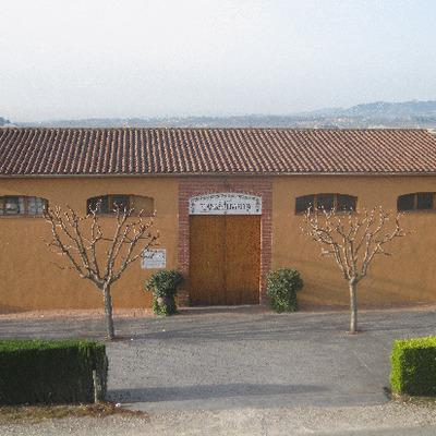 Caves Planas-Albareda