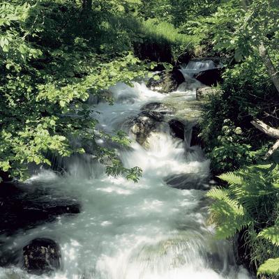 Riera cerca de Vilac, Val d'Aran.