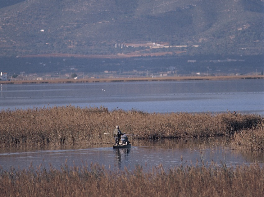 Aiguamolls al Parc Natural del Delta de l'Ebre  (Mariano Cebolla)