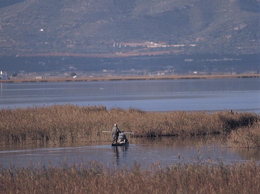 Humedales en el Parc Natural del Delta de l'Ebre.  (Mariano Cebolla)