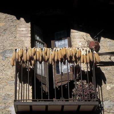 Aspecte rural a la Valldora  (Servicios Editorials Georama)