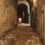 Manresa, ciutat reial