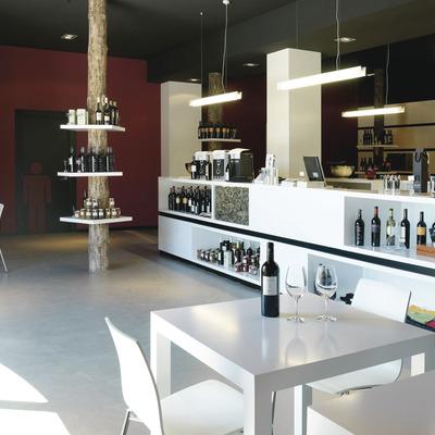 Visita guiada amb tast de vins   (Buil & Giné)