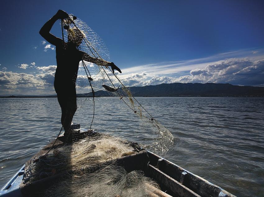 Pesca artesanal a la paupa   (Col·lectiu de Cuina la Ràpita – Delta de l'Ebre)