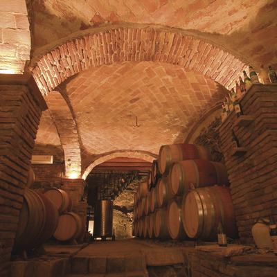The Ruta del Vi del Priorat   (Turisme Priorat (Consell Comarcal del Priorat))
