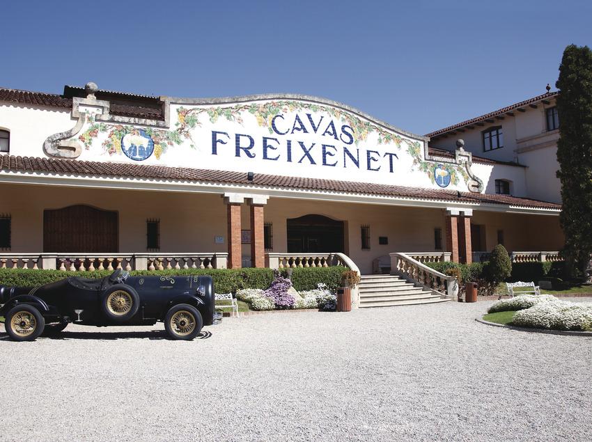 Visita guiada a les caves Freixenet   (Caves Freixenet)