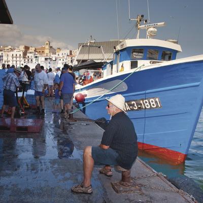 Jornades gastronòmiques   (Àrea Municipal de Turisme de l'Ametlla de Mar)