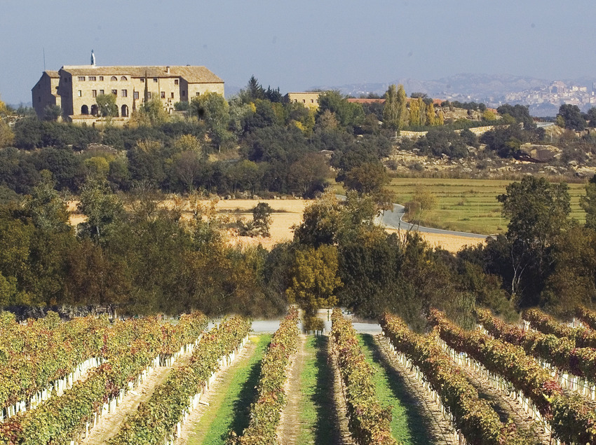 100% Enogastronòmic Experience   (Ruta del Vi de Lleida – Costers del Segre)