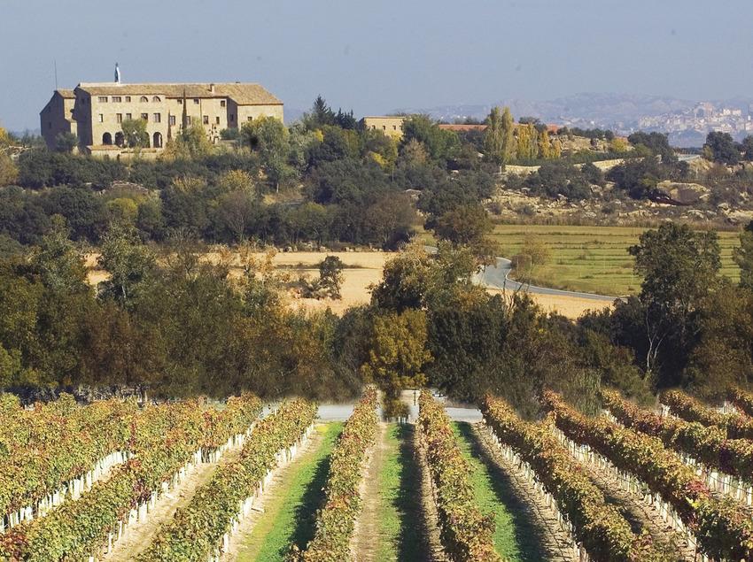 Expérience 100% oenogastronomique   (Ruta del Vi de Lleida – Costers del Segre)