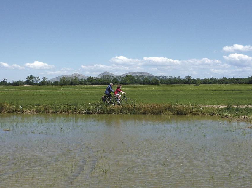 El Baix Empordà, en bicicleta   (Cicloturisme i Medi Ambient)
