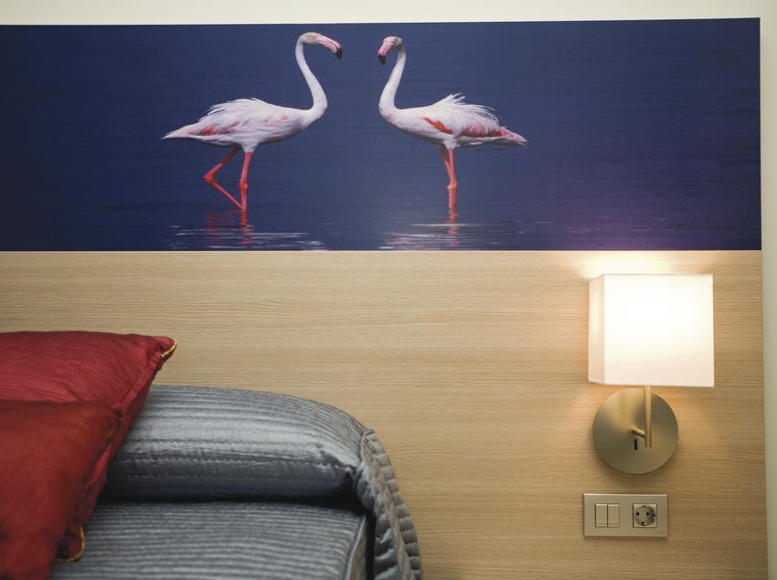 Cicloturismo en el Delta de l'Ebre   (Hotel L'Algadir del Delta)