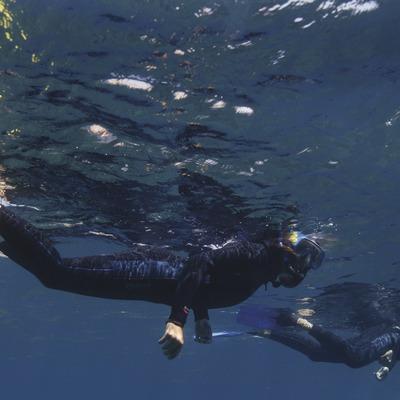Aventureu-vos a les illes Medes   (Medaqua)