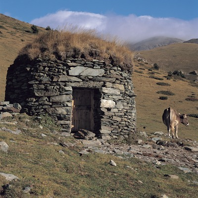 Barraca de la Vacarissa a la vall d'Estremera, prop de Queralbs.  (Ernest Costa)