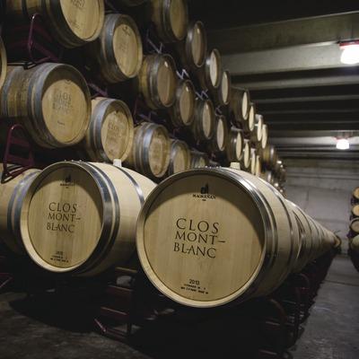 Clos Montblanc, barricas con logotipo en la bodega.