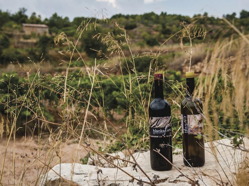 Jordi Llorens, botellas de vino delante de los viñedos.