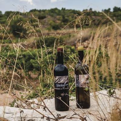 Jordi Llorens, ampolles de vi davant les vinyes. (Marc Castellet)