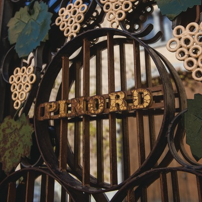 Bodegas Pinord, detall de la porta d'accés a Pinord.