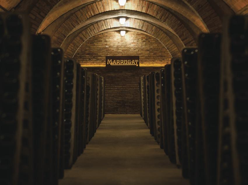 Bodegas Pinord, cava Marrugat. (Marc Castellet)
