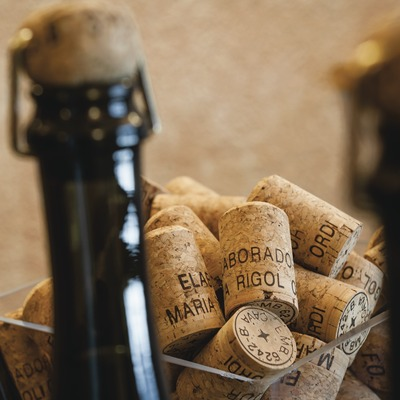 Maria Rigol Ordi, detall del coll d'ampolles de cava amb taps de suro amb el nom inscrit.