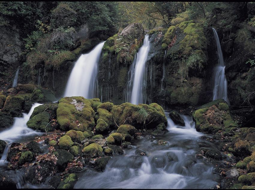 Fonts del Llobregat al Parc Natural Cadí-Moixeró.  (Siqui Sánchez)