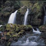 Fonts del Llobregat al Parc Natural Cadí-Moixeró.