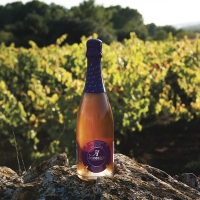 Celler Vega de Ribes, ampolla de vi escumós natural davant les vinyes.