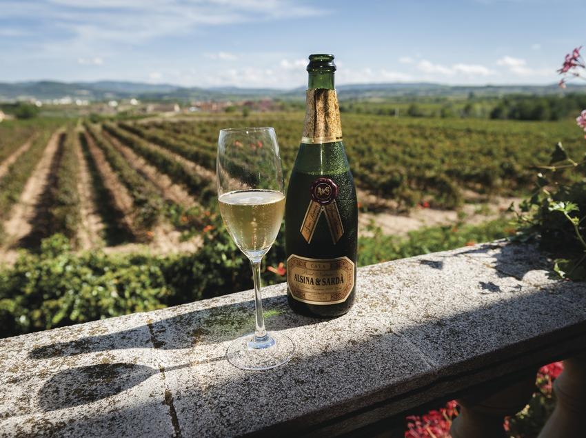 Alsina & Sardà, ampolla i copa de cava amb vinyes de fons. (Marc Castellet)