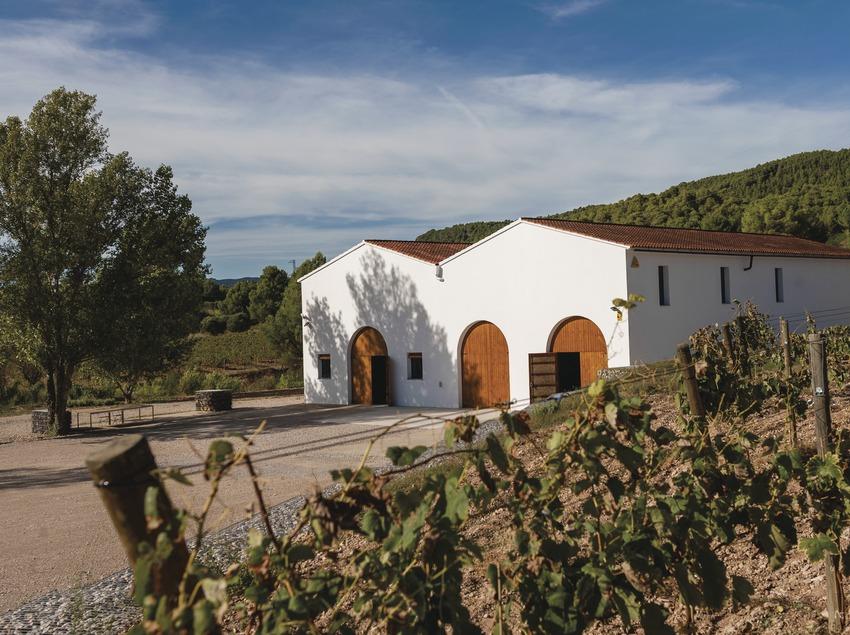 Cava Maria Casanovas, edifici de la cava entre vinyes.