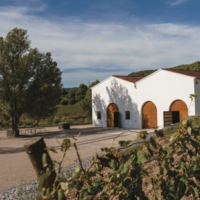 Cava Maria Casanovas, edificio de la cava entre viñedos.