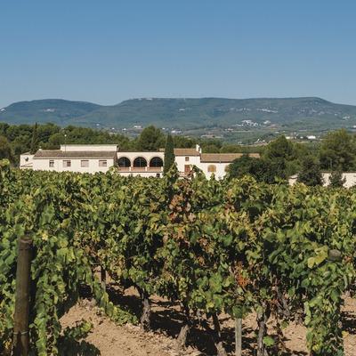 El Penedès. La combinación perfecta en el país del vino
