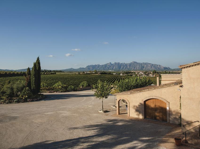 Raventós Rosell - Heretat Vall-Ventós, finca amb vinyes i Montserrat al fons. (Marc Castellet)