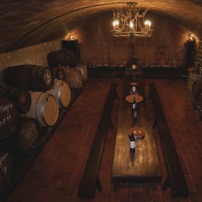 Vall de Baldomar, sala de degustació amb barriques. (Marc Castellet)