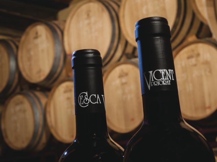 Celler Cesca Vicent, detalle del nombre en botellas de vino con barricas de la bodega de fondo.