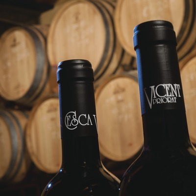 Celler Cesca Vicent, detall del nom en ampolles de vi amb barriques del celler de fons.