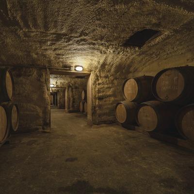 Viticultors del Priorat, barricas dentro de antiguos cubas subterráneos. (Marc Castellet)