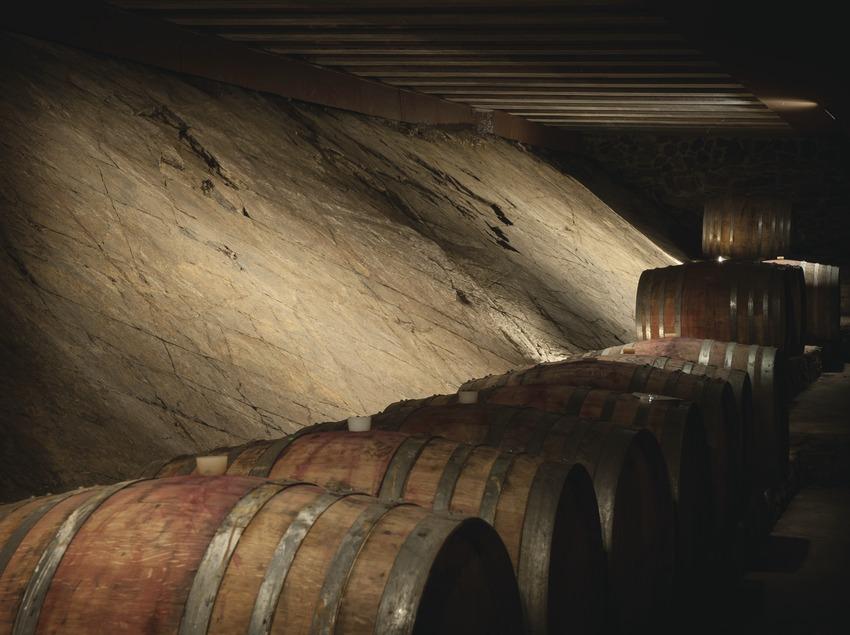 La Vinya del Vuit, barriques al celler. (Marc Castellet)