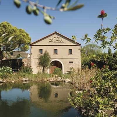 Gelamà, façana de la cava amb l'estany i les oliveres davant.