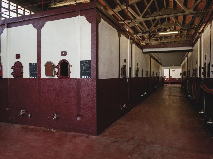 Vinícola Nordest, interior del celler.