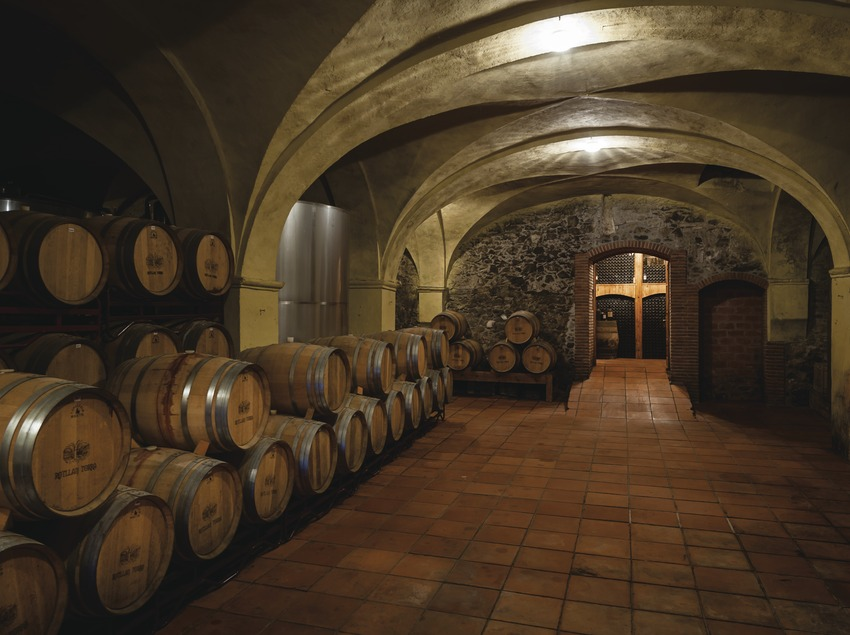 Vins d'Alta Qualitat. Rotllan Torra, celler històric amb barriques. (Marc Castellet)
